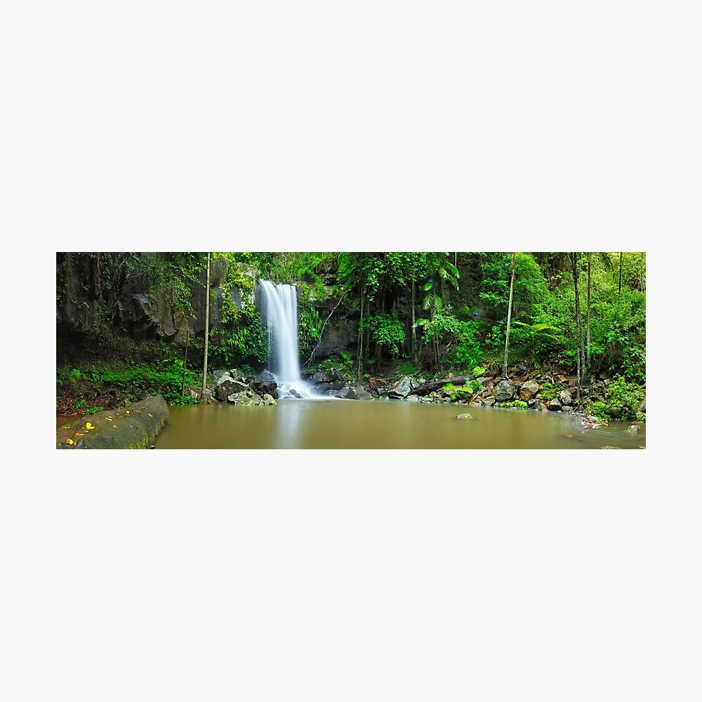 Curtis Falls, Tamborine National Park, Queensland Photographic Print