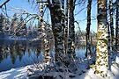 Snowy Lake by Tori Snow
