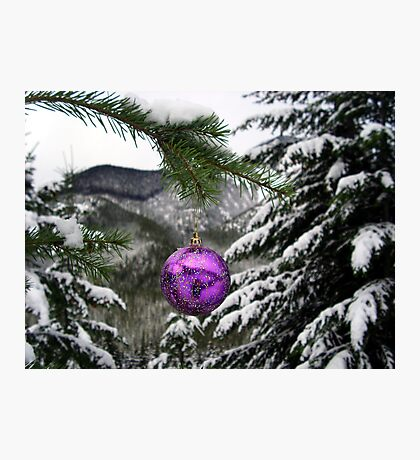 Chistmas Cheer Photographic Print