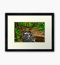 Young's Creek Framed Print