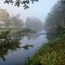 Foggy Morning, Gloucester River, NSW by Robyn Selem