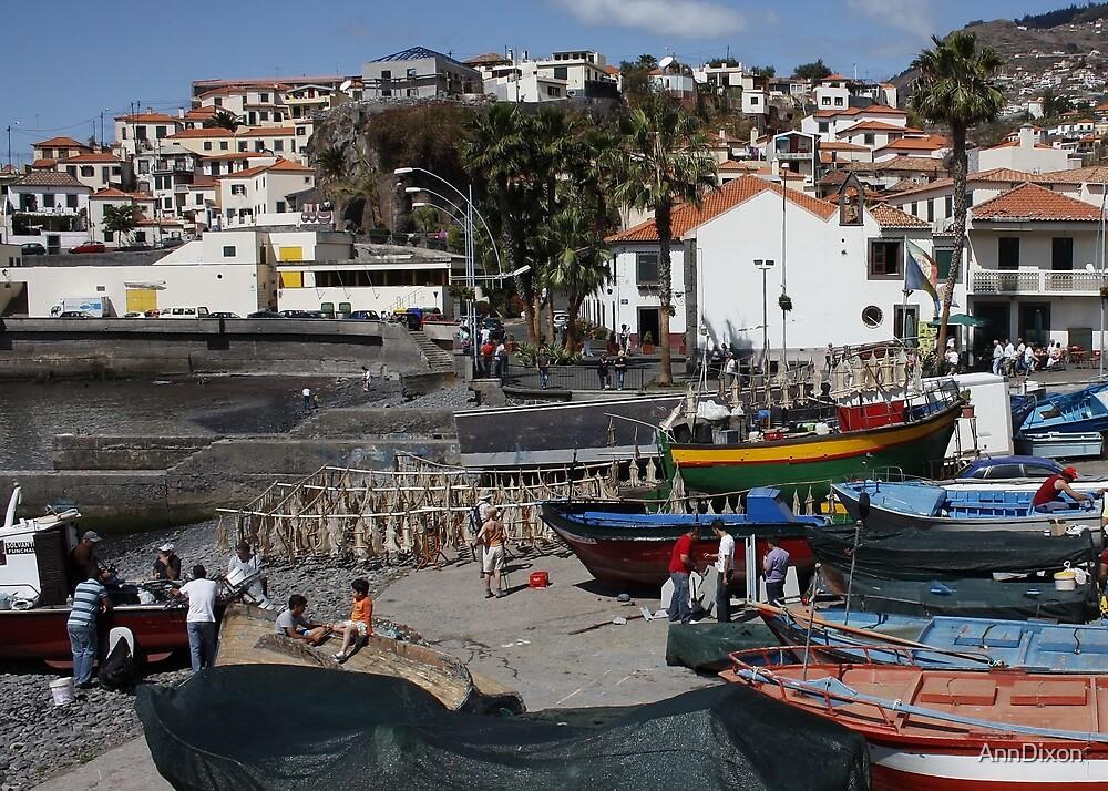 Camara de Lobos Madeira by AnnDixon