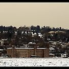 FROZEN CITY ON THE HUDSON by BOLLA67