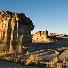 Evening in the Bisti by Mitchell Tillison