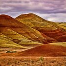 Painted Hills by Kathy Weaver
