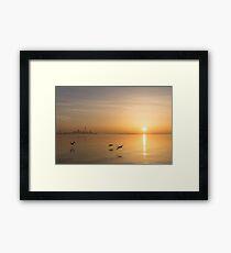 Golden Morning Flight Framed Print