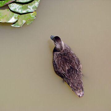 Duck (Jecia age 8) by jeciaissy