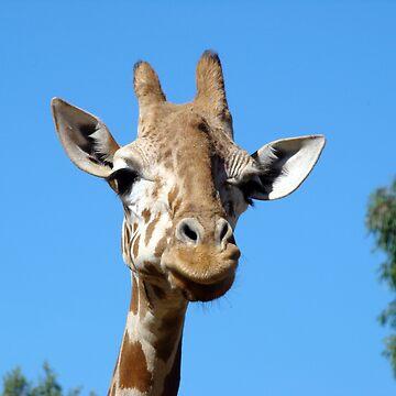 Giraffe (Jecia age 8) by jeciaissy