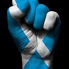 Flagge von Schottland auf einer angehobenen geballten Faust von jeff bartels