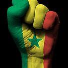 Flagge Senegals auf einer angehobenen geballten Faust von jeff bartels