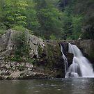 Abram's Falls by Paul Doucette
