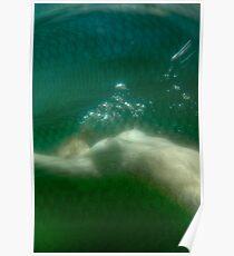 Undersea 03 Poster