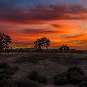 Brushstrokes In The Sky by MCHerdering