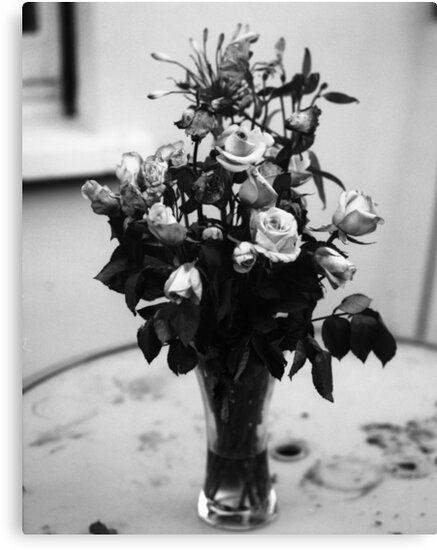 Flowers Of Romance by rorycobbe
