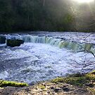 Aysgarth Falls #1 by Trevor Kersley