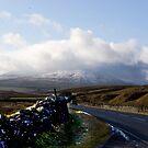 Whernside   -   Yorkshire Dales by Trevor Kersley