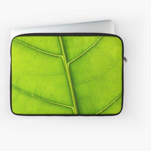 Eco green leaf Laptop Sleeve