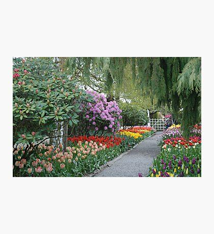Beautiful Spring Garden Photographic Print
