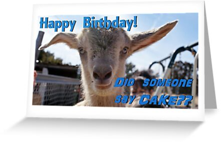 Baby Goat Birthday by Janette  Kimbrough