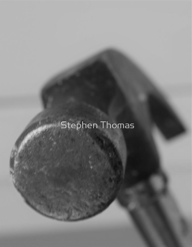 Ol'Stanley's Head Shot by Stephen Thomas