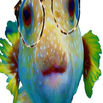 Puffer Fish with glasses by Tom Sachse by TSachse