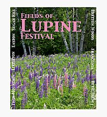 Fields of Lupine Festival Photographic Print