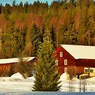 Old Barns by MarianaEwa