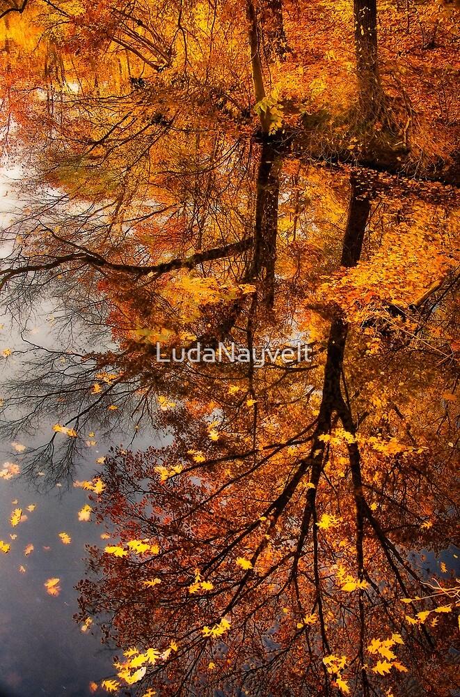 Fall Reflection  by LudaNayvelt