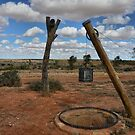Old Well - Milparinka Historic Precinct NSW Australia by Bev Woodman