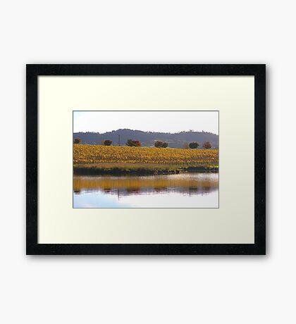 Golden Reflection Framed Print