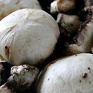 :::mushrooms::: by Isabelle Weerawardena