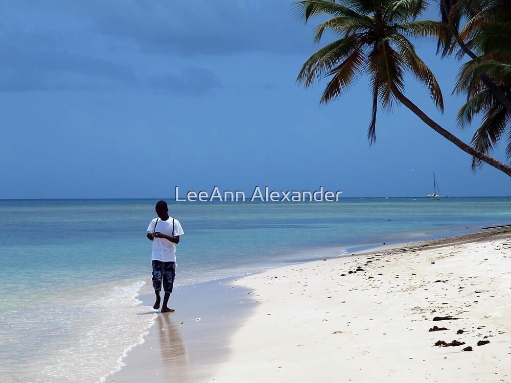 Strolling the Beach by LeeAnn Alexander