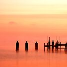 Eery Morn by Clayton Bruster