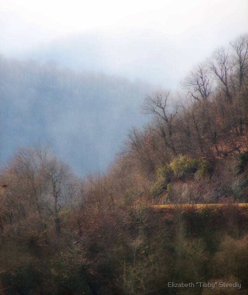 Dancing Mist by Tibby Steedly
