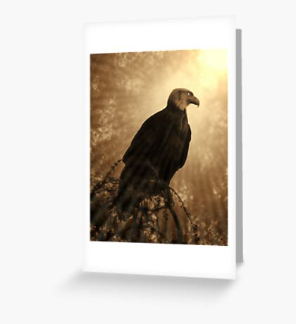 Almost Above The Clouds Greeting Card