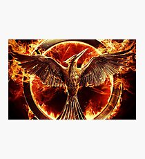 Hunger games Photographic Print