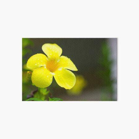 Yellow flower Art Board Print