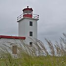 Caribou lighthouse Nova Scotia Canada by Roxane Bay