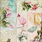 Belles Fleurs II by mindydidit