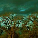 Emerald Sky by Pamela Hubbard