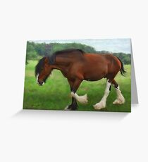 Shire Horse Mare Greeting Card