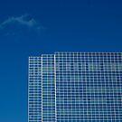 Blue Through and Through by Pamela Hubbard