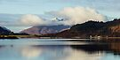 Ardgour Through The Clouds by Mark Greenwood
