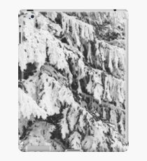 Spruce covered in snow iPad Case/Skin