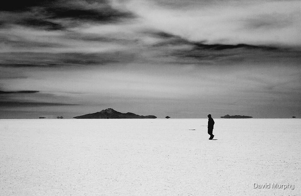 Salt Lakes by David Murphy
