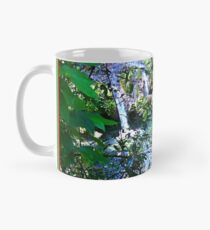 Moutain Pool and Waterfalls Mug