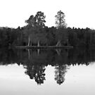 Reflection on the Lake #1 by LMayhewWriter