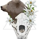 « Skull - The bear » par Kamishka