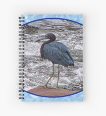 Little Blue Heron at the River Spiral Notebook