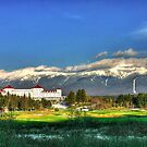 Mount Washington Hotel at Bretton Woods by Wayne King